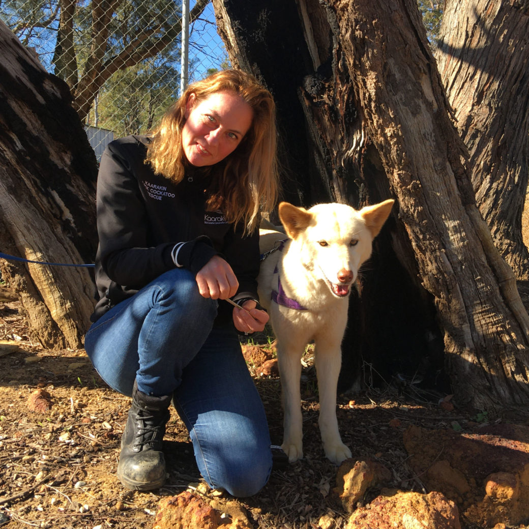 Monique with dingo Amy