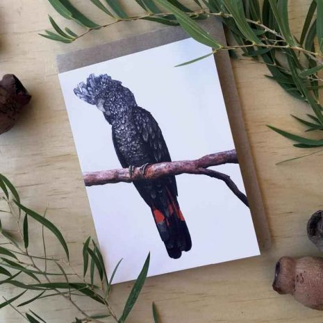 Red-Tailed Male Black Cockatoo Blank Greeting Card