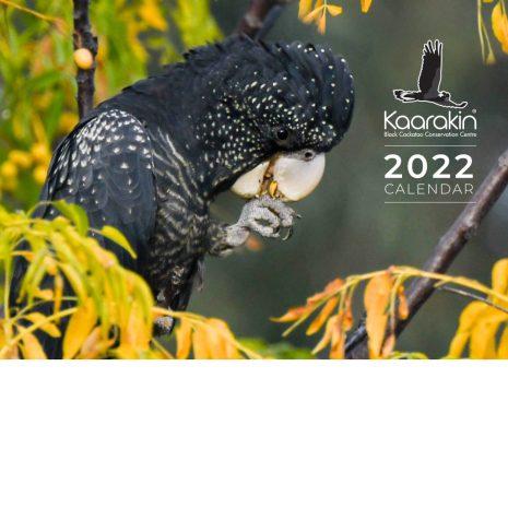 Kaarakin Calendar 2022 cover