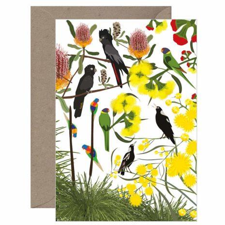 Australian Bushbirds